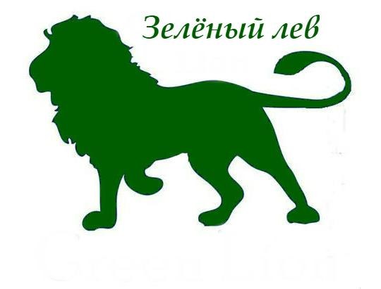 Фабрика деревянной игрушки «Зелёный лев»